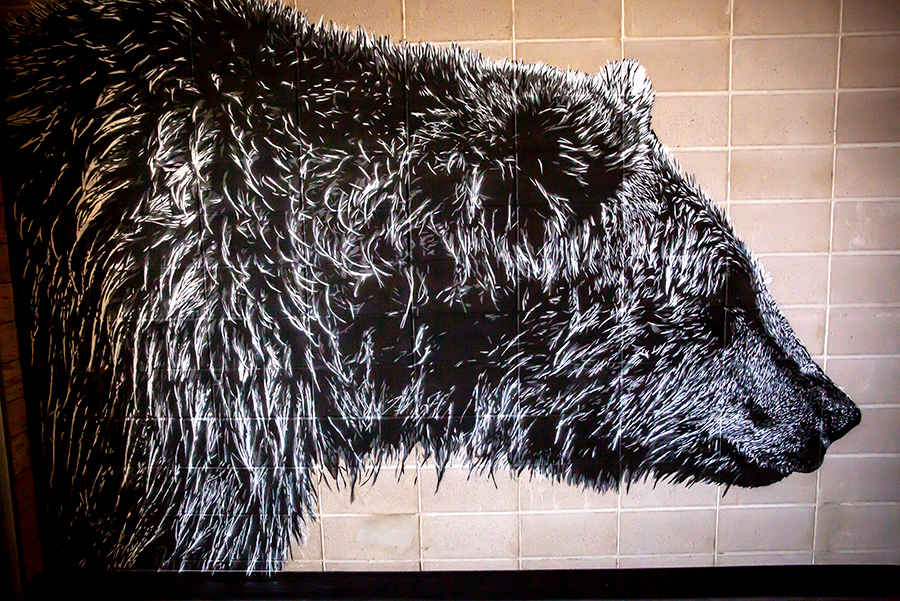 A mural of a grizzly bear inside the Growlery Beer Co.