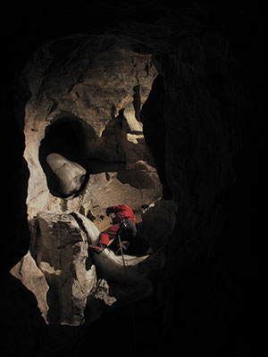 ascending out of Alberta cave for bat research
