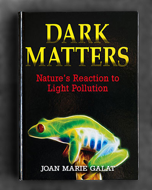 Dark Matters book cover